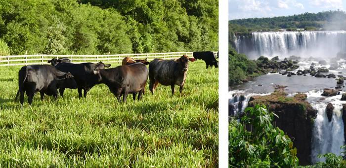 Atlas Brasilien Landschaft 2